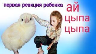 VLOG:Дети и животные// Знакомство с домашней птицей// Первая реакция ребенка