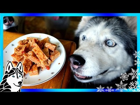 DIY DOG TREATS SALMON BRITTLE | Snow Dogs Snacks 56 | DIY Dog Treats Fish Treats