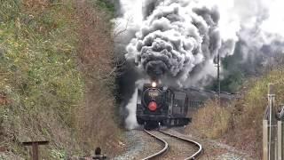 2019-1-2 D51200牽引SL津和野稲成号