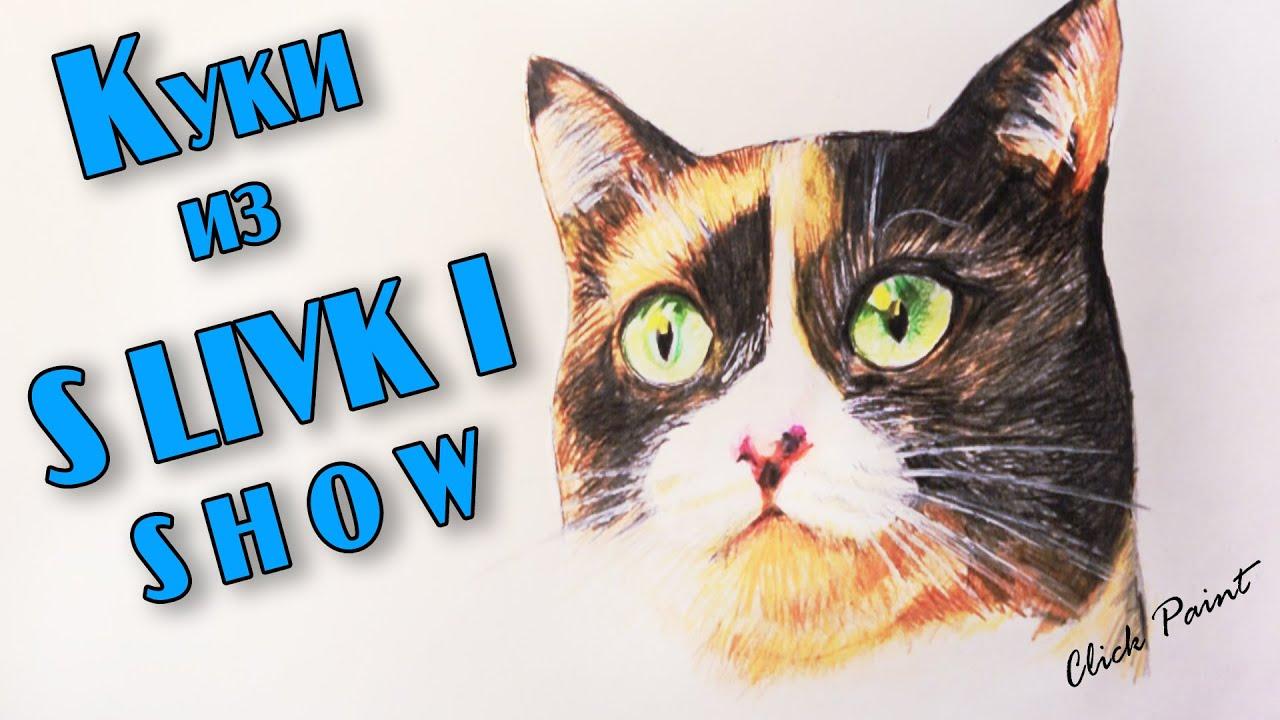 Видео про куки кота