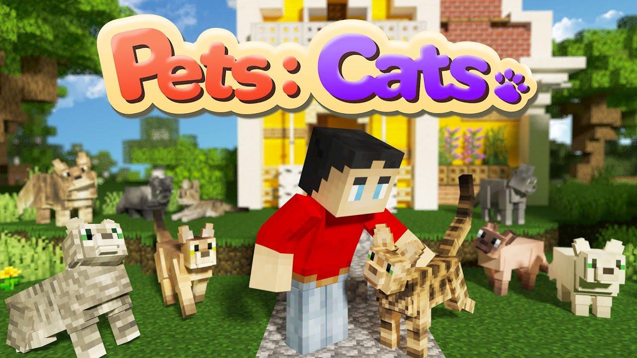 Pets Cats Minecraft Marketplace Map