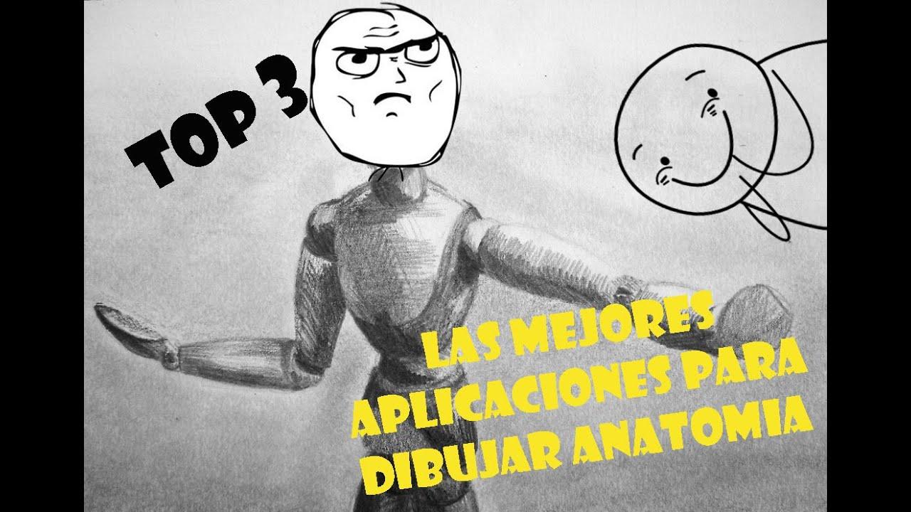 Top: 3 Aplicaciones Para Dibujar Anatomía Humana Para Android - YouTube