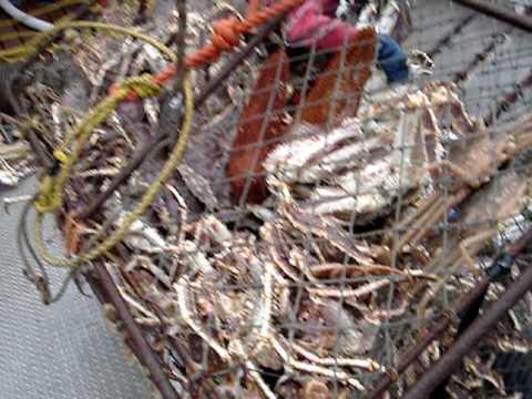 Crab Fishing In Dutch Harbor