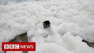 'Toxic' foam blankets Indian beach - BBC News