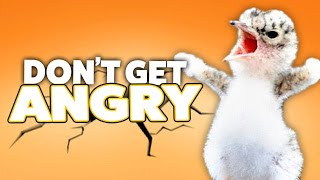 TRY NOT TO GET ANGRY CHALLENGE