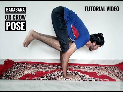 how to study bakasana or crow pose yoga tutorial video