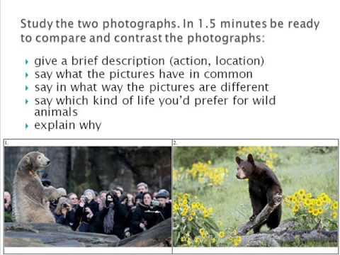 Сравнение картинок по английскому