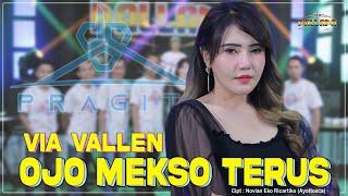 Via Vallen - Ojo Mekso Terus | New Pallapa Official ( Official Music Video terbaru 2021)