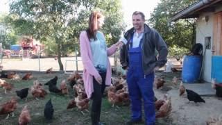 Farming Simulator. Prawdziwe Historie | Odc. 1 - hodowla kur