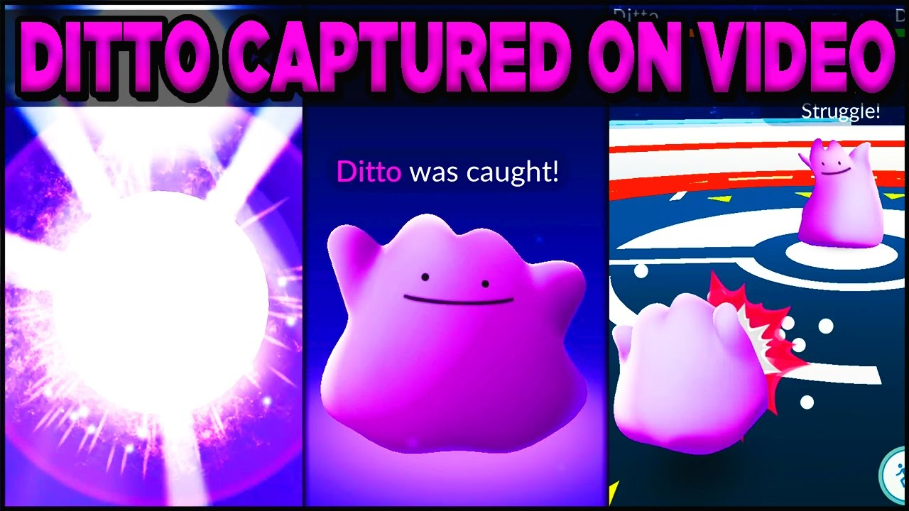 How to find and use a Ditto in Pokemon Go - CNET