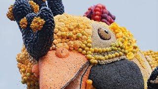 LIVE: Fruitcorso in Tiel