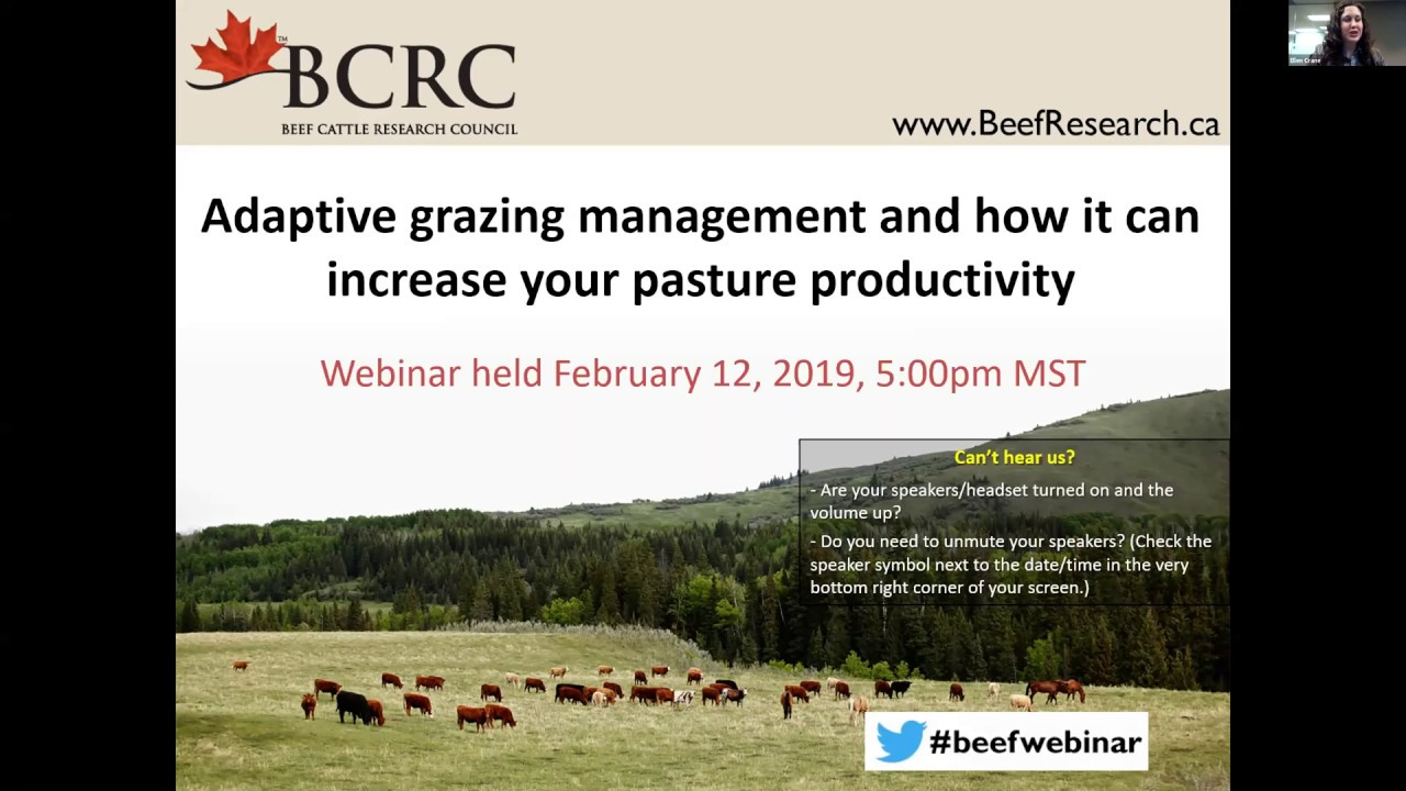 Webinars - Beef Cattle Research Council