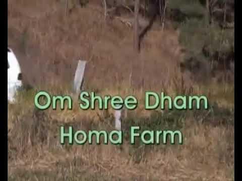 Organic farming in australia
