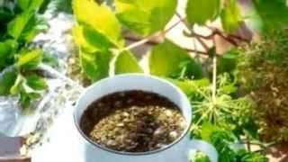 Монастырский чай от алкоголя