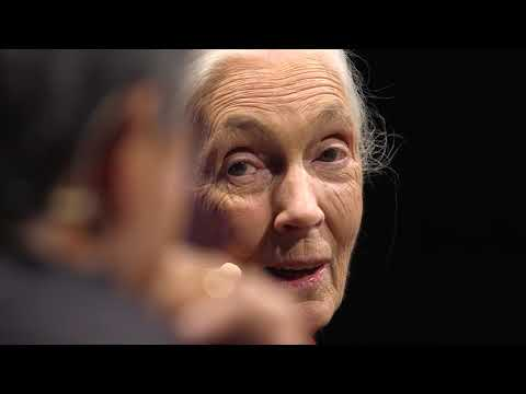 Dr. Jane Goodall & Guy Kawasaki | TEDxPaloAltoSalon