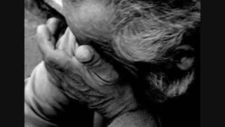 fatih kisaparmak yigidi gül aglatir (damar)