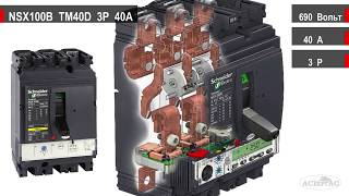 NSX100B-TM100D-3P-100A  -  Обзор автоматического выключателя в литом корпусе (LV429550)