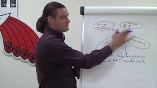 НЛП Практик. Как создавался тренинг и чему вы научитесь. Михаил Антончик