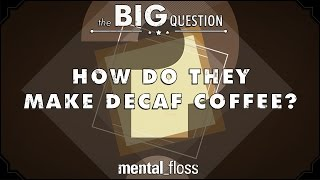 How Do They Make Decaf Coffee? - The Big Question - (Ep.1)