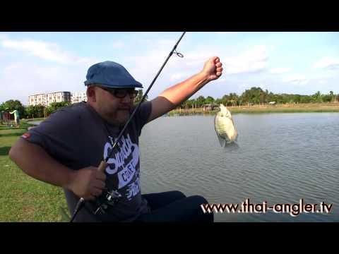 Angler Tour : บ่อตกปลานิวเพทาย