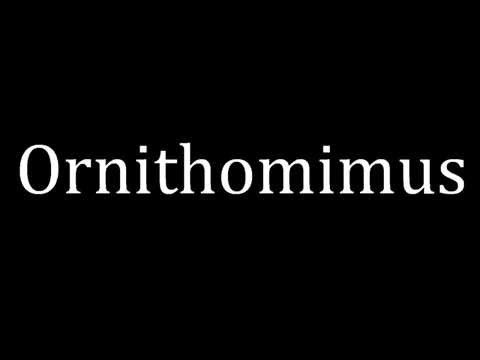 How to pronounce Ornithomimus