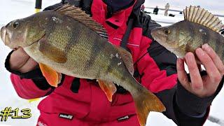 Ловля крупного окуня зимой ЖОР на балансир Зимняя рыбалка 2020 первый лёд 2020