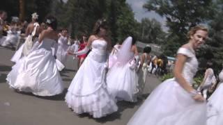 Скачать Сбежавшие невесты в Липецке