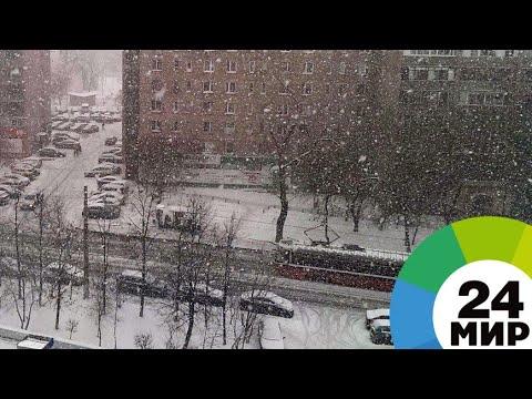 МЧС: Погода в Москве резко испортится - ожидается сильный мокрый снег - МИР 24