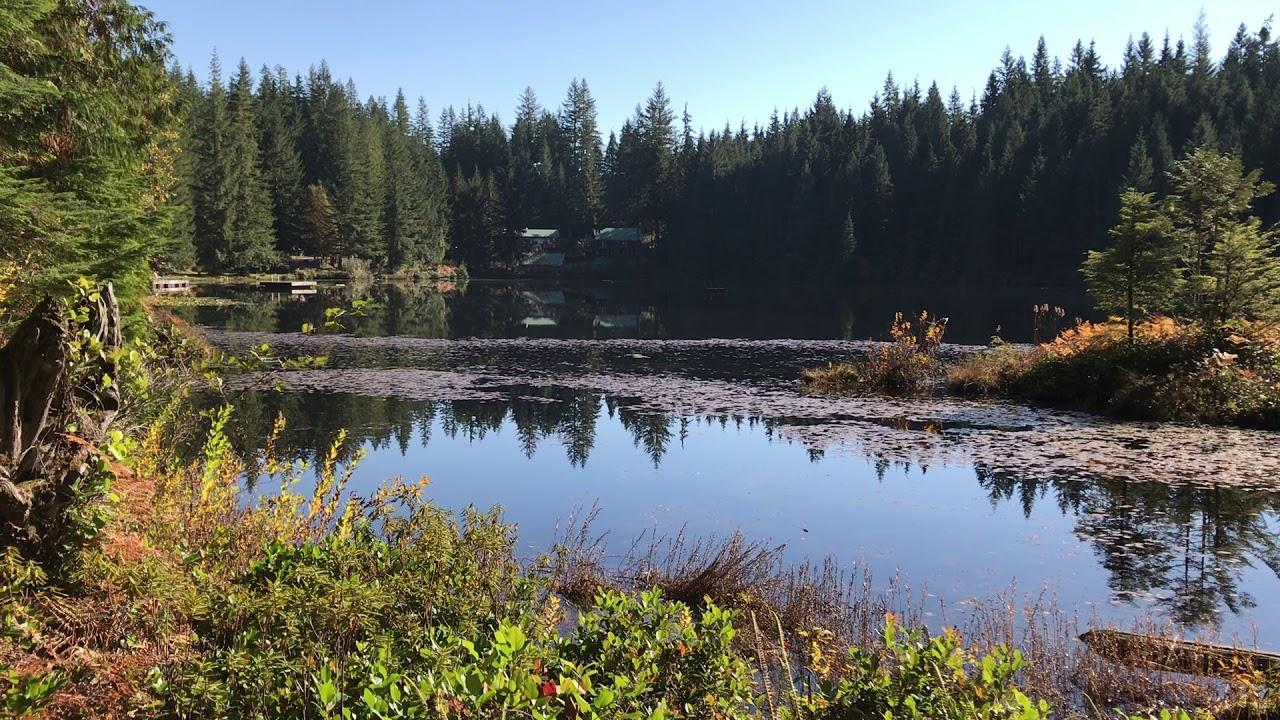 Nudist family park bronson Lake