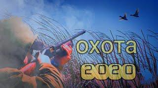 Весенняя охота на утку 2020