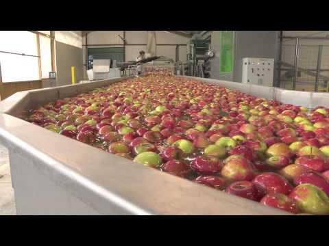 Safer Rhône-Alpes, Drôme : Fruit du travail