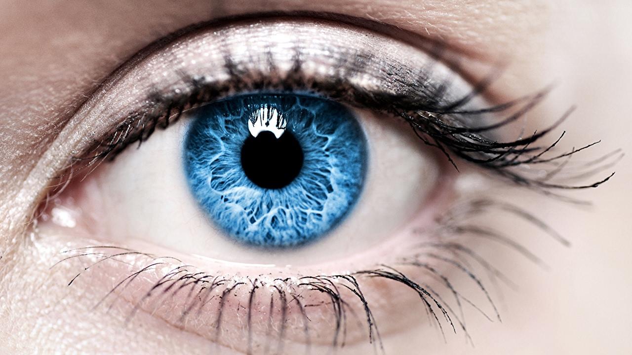 Картинки по запросу картинки голубых глаз