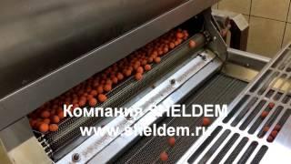 Линия по обжарке орехов в оболочке и без оболочки