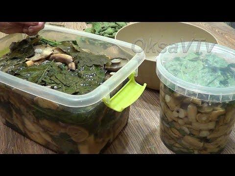 Засолка груздей(холодный способ с рассолом). Salting Of Mushrooms (cold Method With Brine).