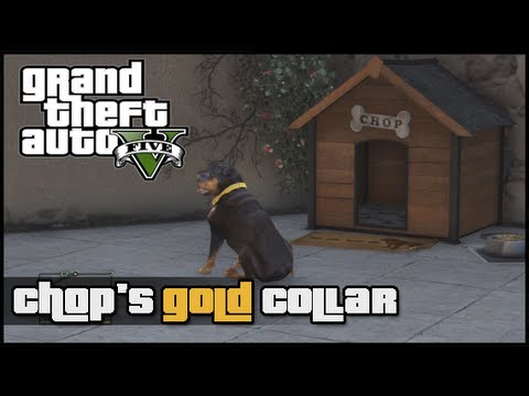 Grand Theft Auto V: How To Get Chop's Gold Collar (GTA 5)