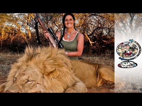 How Much Would You Pay To Kill A Lion?
