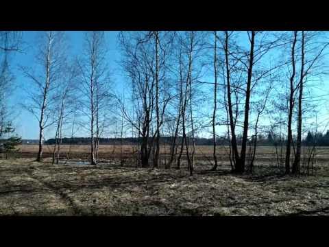 Участок  в лесу рядом с д. Берюлево