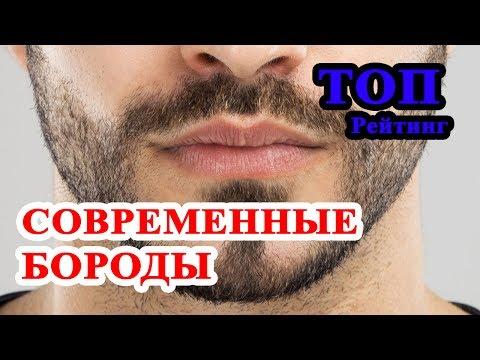 ТОП 8 современных мужских бород. Какую бороду все же носить? - Познавательные и прикольные видеоролики