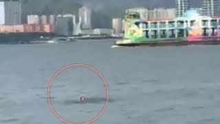 Baixar SAR launched for passenger who fell off Penang ferry