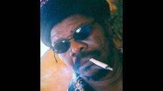 Prince Jazzbo - 12 Tribe Posse