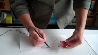 How to Draw a Fall Leaf