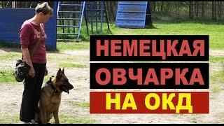 видео Козова (Тернопольская область)