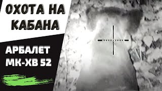 Охота на кабана с арбалетом МК-ХВ52