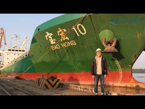 HAI PHONG PORT - MV BAO HONG (7,639 DWT) NOV 2018 - PACIFIC AGENCY