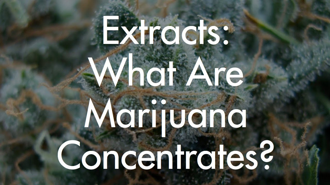 Extracts: Marijuana Concentrates, Types Of Extraction And Our Preferred  Extracts