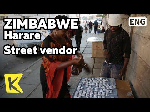 【K】Zimbabwe Travel-Harare[짐바브웨 여행-하라레]번화가에서 만난 약초 노점상/Street vendor/Medicinal herb/Herd