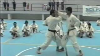 Nijushiho Bunkai Kumite