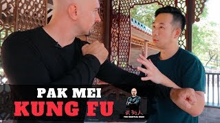 Pak Mei Kung Fu | Sifu Adam Chan | Exclusive Video Interview