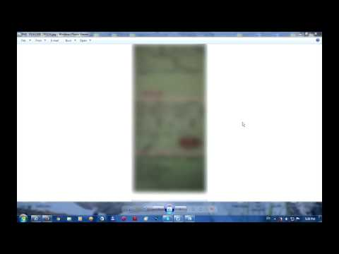 How To Save A Picture From The Internet (Windows 7, Photo Viewer)