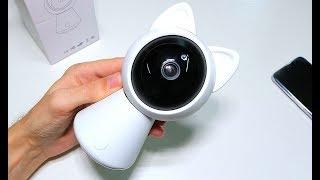 WiFi Cute Cat Smart Security IP-камера